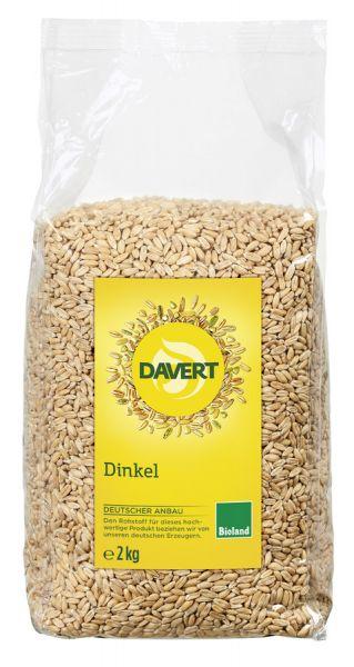 DAV21040